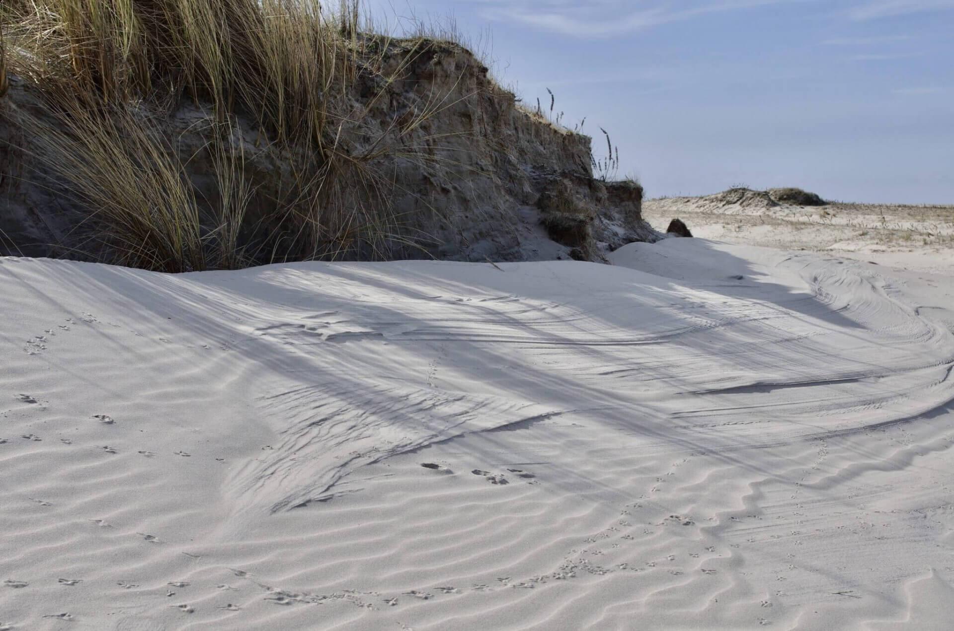 Duinen op Schiermonnikoog